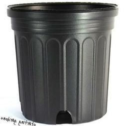 1 Gallon Nursery Pot , Black Trade Gallon, 6.5 Inch