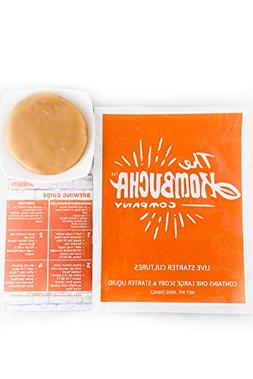Large Kombucha Brewing SCOBY & 16oz  Strong LIVE Starter TEA