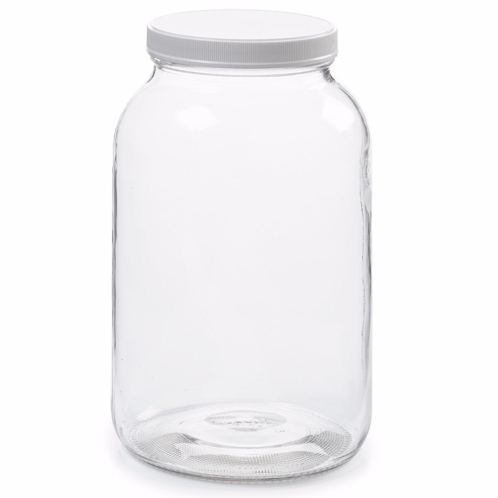 1 w/ Airtight Lid BPA Dishwasher Safe