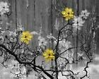 Rustic Home Decor, Yellow Gray Floral Home Decor Matted Wall